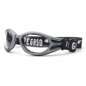 Gafas de seguridad Pegaso Cover Briko