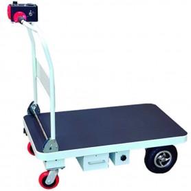 Carro plataforma eléctrica