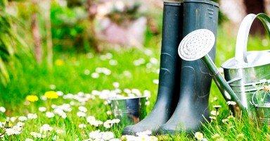 Las herramientas más efectivas para el cuidado de un jardín